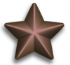 bronze-service-star.png