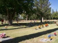 Calvary cemetery douglas