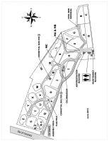 Campnelson833 pdf